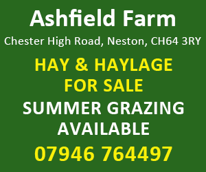Ashfield Farm (Wirral Horse)