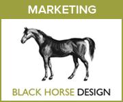 Black Horse Design Marketing (Wirral Horse)