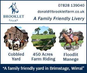 Brooklet Livery 26 (Wirral Horse)