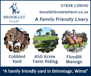 Brooklet Livery 23 (Wirral Horse)