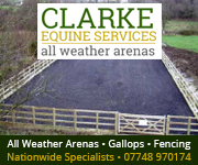 Clarke Equine Services  2018 (Wirral Horse)