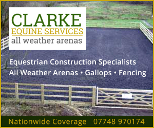Clarke Equine Services 2020 (Wirral Horse)