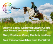 Coleg Cambria 9 (Wirral Horse)