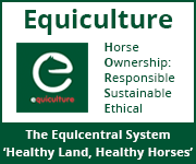Equiculture 01 (Wirral Horse)