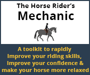 The Horse Rider's Mechanic 01 (Wirral Horse)