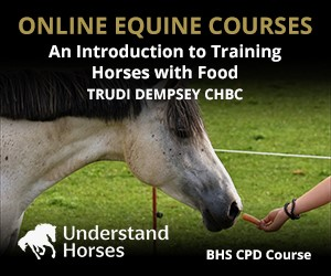 UH - An Introduction To Training Horses With Food (Wirral Horse)